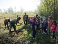 Luna Plantării Arborilor, marcată de Direcţia Silvică Sibiu
