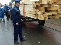 Adolescent amendat cu 10.000 de lei pentru un transport ilegal de lemne