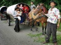 Romii din Transilvania vor să-și conducă propriul minister al minorităţilor