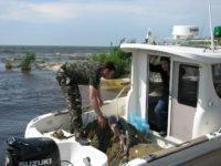 """Garda Naţională de Mediu """"curentează"""" braconierii piscicoli din zona Dunării"""