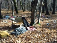 Păstrați curățenia în pădure!
