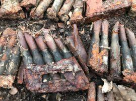Sute de cartușe, descoperite în Pădurea Dumbrava   FOTO