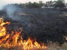 """Incendierea vegetației fără autorizație """"arde"""" și la buzunare"""