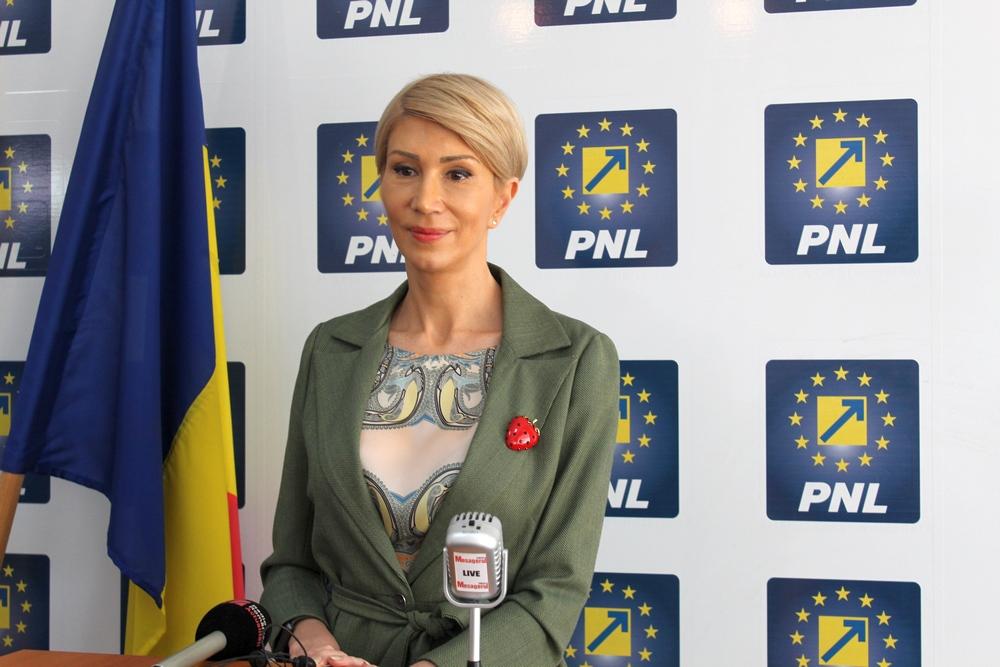 PNL Sibiu consideră necesară depunerea unei moţiuni simple împotriva ministrului Finanţelor