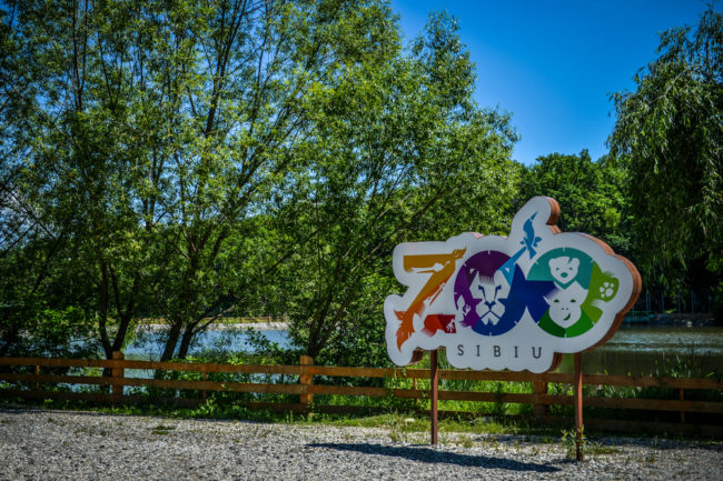 Lecții de reciclare la Zoo Sibiu