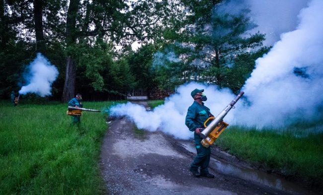 Primăria Sibiu desfășoară o nouă acțiune de dezinsecție împotriva țânțarilor