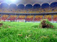 Țiriac vrea gazon sintetic pe Arena Naţională