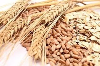 LEACURI DIN NATURĂ   Cereale integrale: orz, ovăz, grâu, mei, hrişcă şi secară