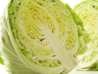 LEACURI DIN NATURĂ | Varza albă (Brassica oleracea)