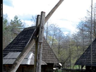 Revista Transilvania se (re)lansează