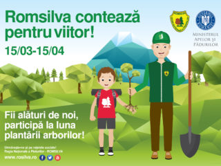 1,1 milioane de puieți forestieri vor fi plantați în județul Sibiu în această primăvară (P)