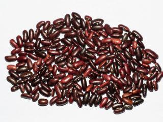 LEACURI DIN NATURĂ | Fasolea boabe (Phaseolus vulgaris)