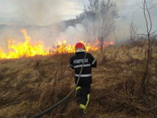 Arderile de vegetație uscată, în vizorul autorităților