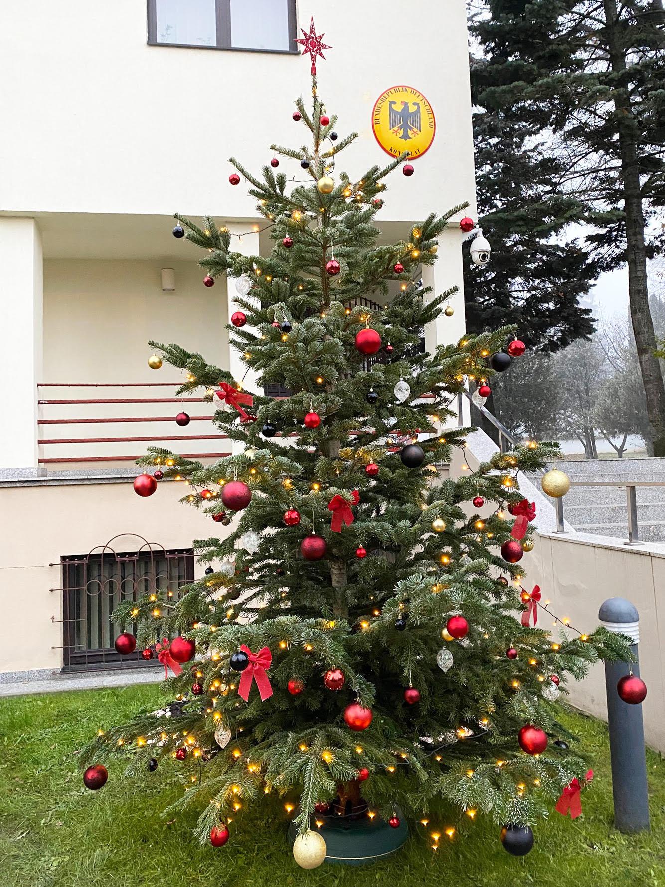 Să ne bucurăm cu toţii cât mai repede de vaccin – Mesajul Consulului Germaniei Hans E. Tischler înainte de Crăciun