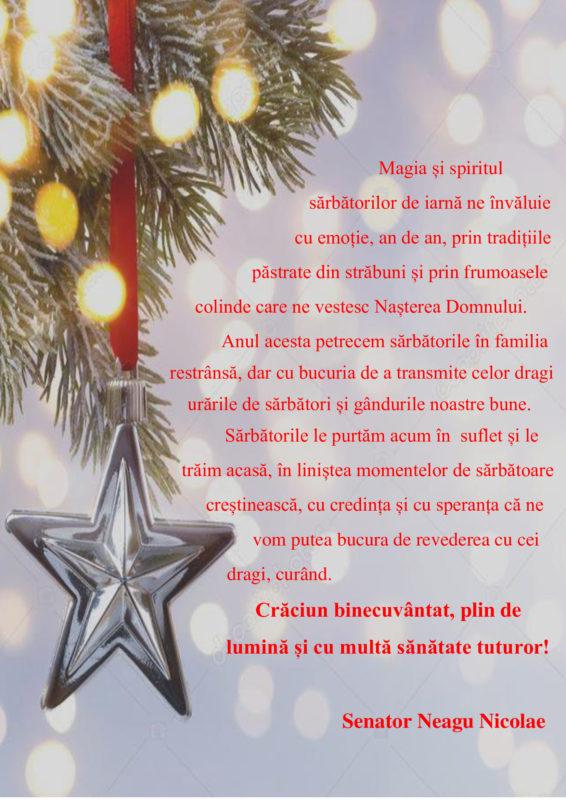 Mesajul senatorului Nicolae Neagu cu ocazia sărbătorilor de iarnă