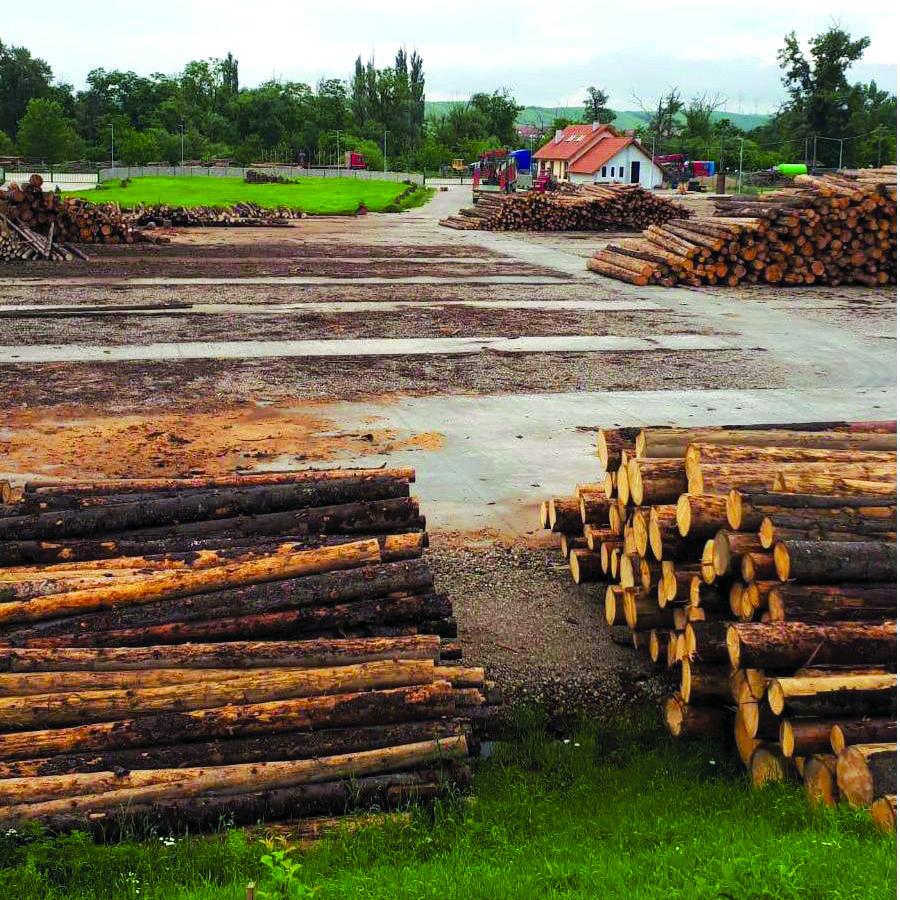 Direcția silvică Sibiu pregătește un instructaj privind utilizarea SUMAL 2.0